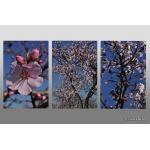 Triptychon_02.jpg